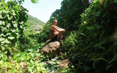 SWWW Dominica Title Pic