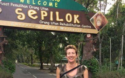 SueWhereWhyWhat Sepilok Orang Utan Rehabilitation Centre, Borneo