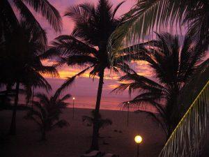 A amazing purple and orange sunset inflames the sky beyond the palm trees along the beach, Sri Lanka