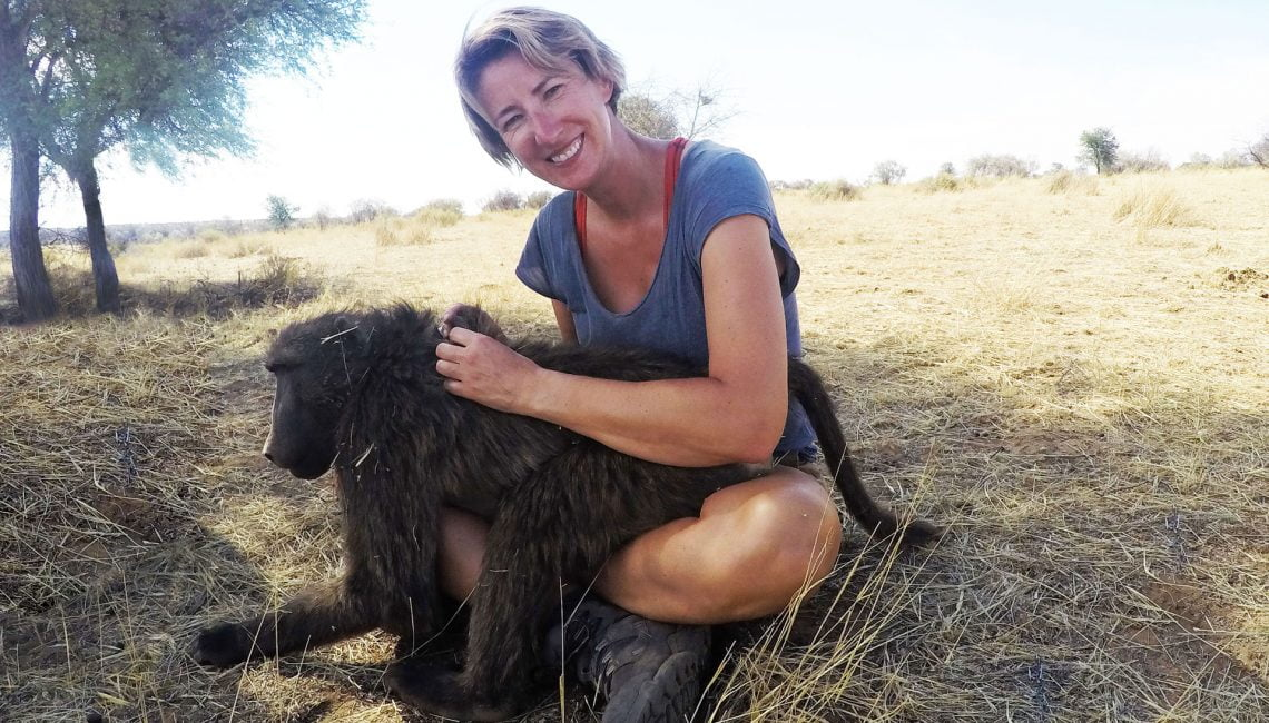 SWWW grooming a Baboon in Namibia
