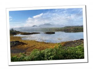 Dunvegan Castle Top 15 Picks for Your Perfect Isle of Skye Itinerary