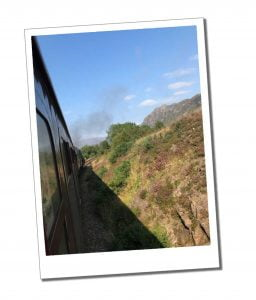 View from the train - Everything You Need to Know to Ride & Photograph the Hogwarts Train, Scotland